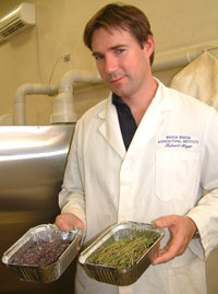 NSW Department of Primary Industries' Richard Meyer, analytical chemist with the Feed Quality Service, tests stockfeed from across the State.