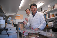NSW DPI immunologist Dr James Chin and researcher Kent Wu at the Elizabeth Macarthur Agricultural Institute.
