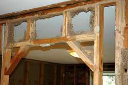 A termite-infested house frame
