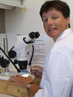 Dr Joanne Holloway's latest research is into beneficial insects in cereal crops.